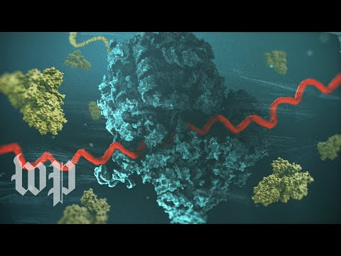 How mRNA helped scientists create a covid-19 vaccine in record time