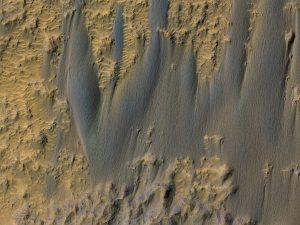 Sipine Marsa