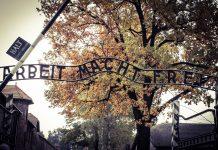 """Napis: """" Delo osvobaja"""" ob vhodu v Auschwitz."""